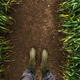 Farmer in rubber boots walking through muddy wheat field - PhotoDune Item for Sale