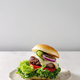 Homemade hamburger with beef - PhotoDune Item for Sale
