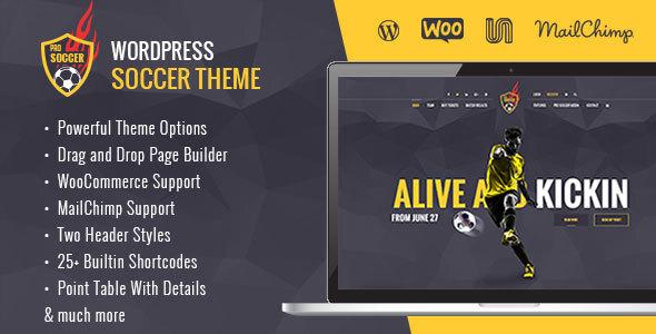 Soccer Acumen - Football Club WordPress Theme