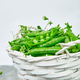 White Basket with fresh green peas on grey background. - PhotoDune Item for Sale
