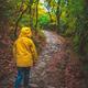 Girl in yellow jacked walking in woods - PhotoDune Item for Sale