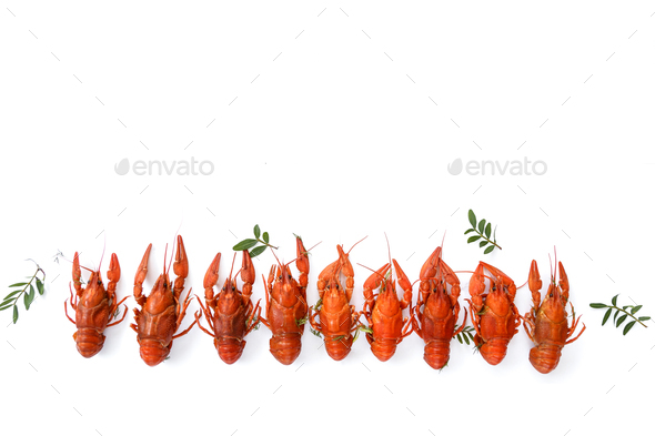 Several boiled crawfish isolated on white. top view. Flat lay - Stock Photo - Images