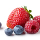 fresh berries on white background - PhotoDune Item for Sale