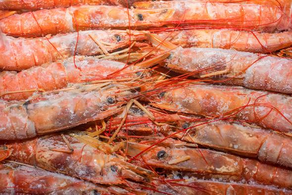 Fresh raw frozen langoustines as a background - Stock Photo - Images