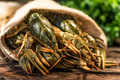 Raw crayfish with beer on wooden background - PhotoDune Item for Sale