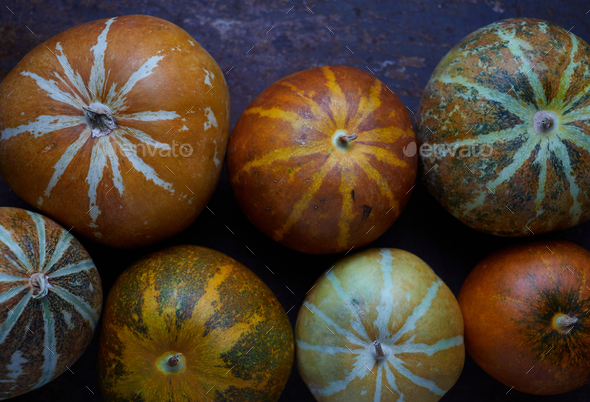 Muskmelon no rusty metal floor - Stock Photo - Images