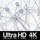 4K Digital Network of Connections Web of Nodes Dots and Lines - VideoHive Item for Sale