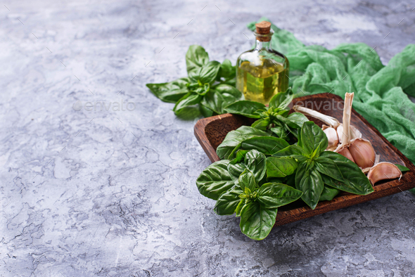 Fresh green basil with garlic and olive oil - Stock Photo - Images