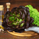 Fresh green and red lettuce, oil, seasonings on the wooden backg - PhotoDune Item for Sale