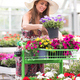 Stylish young woman choosing plants at a nursery - PhotoDune Item for Sale