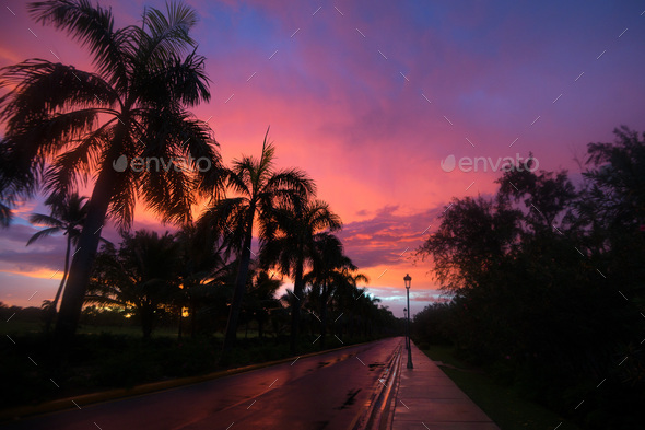 Scenic tropical sunset - Stock Photo - Images
