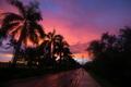 Scenic tropical sunset - PhotoDune Item for Sale