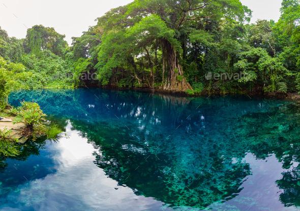 Matevulu Blue Hole, Espiritu Santa Island, Vanuatu, tourist dest - Stock Photo - Images