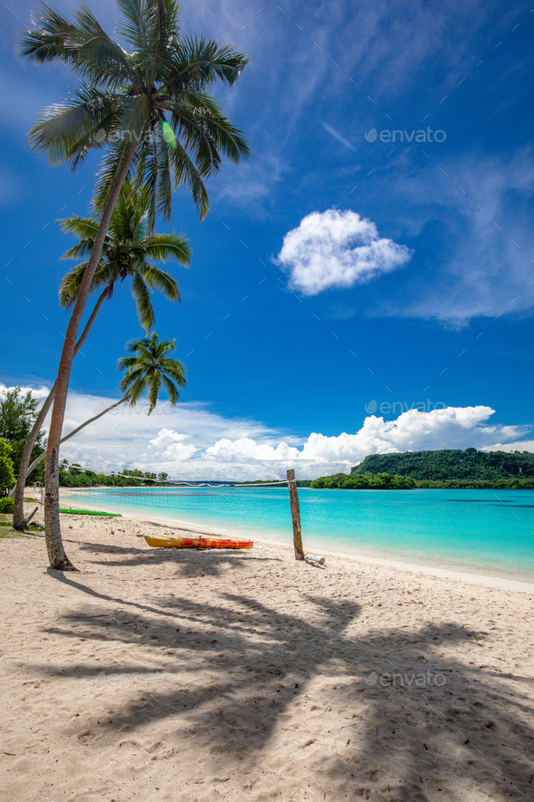 Port Orly sandy beach with palm trees, Espiritu Santo Island, Va - Stock Photo - Images