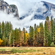 Yosemite Valley at cloudy autumn morning - PhotoDune Item for Sale