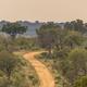 Dirt road S4 through savanna - PhotoDune Item for Sale