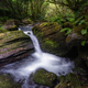 Waterfall and Pools between Mossy Rocks and Lush Vegetation - PhotoDune Item for Sale