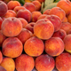 Fresh peaches on a farmer's market - PhotoDune Item for Sale