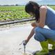 Woman mesures irrigation water with digital PH meter in water pu - PhotoDune Item for Sale