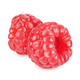 Red raspberry isolated on white background - PhotoDune Item for Sale