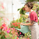 Young female gardener or greenhouse worker taking care of plants on flowerbed - PhotoDune Item for Sale