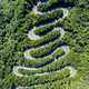 Aerial top view of a winding road in green forest by drone - PhotoDune Item for Sale