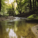 water in forest river scenery, natural serene landscape - PhotoDune Item for Sale