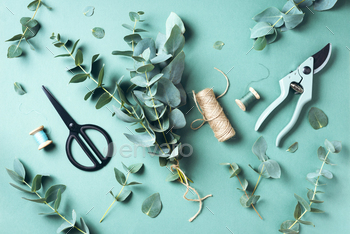 Eucalyptus bouquet creating with baby blue eucalyptus branches over green background. Florist work