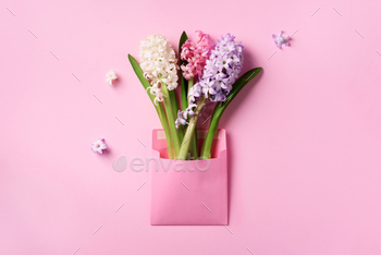 Spring hyacinth flowers in pink postal envelope over punchy pastel background with copy space. Top