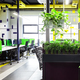 Modern open space office interior with green plants - PhotoDune Item for Sale