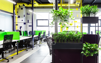 Modern open space office interior with green plants