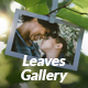 Leaves Photo Video Gallery - VideoHive Item for Sale