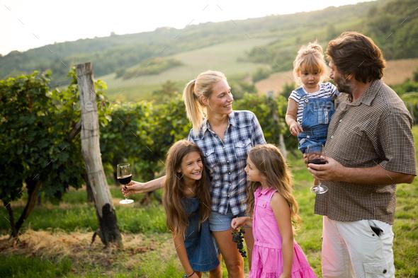 Wine growers tasting nice wine in vineyard - Stock Photo - Images