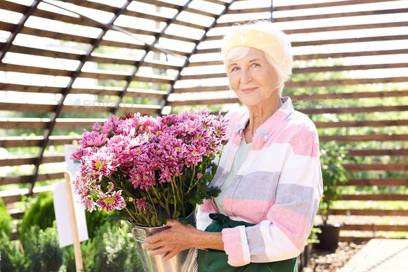 Senior Gardener Posing with Flowers - Stock Photo - Images