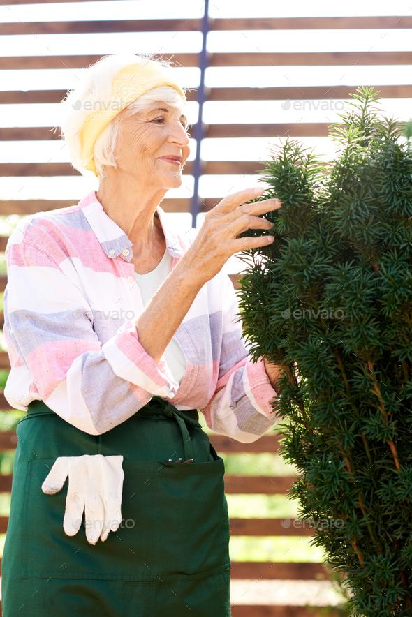 Mature Woman Enjoying Gardening - Stock Photo - Images