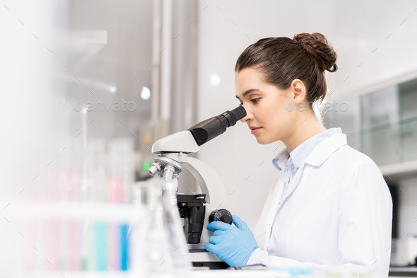 Forensic science technician analyzing evidence - Stock Photo - Images