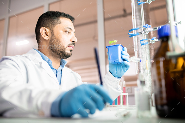 Research technician collecting data about seedling - Stock Photo - Images
