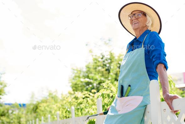 Senior Gardener in Sunlight - Stock Photo - Images