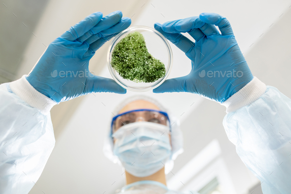 Microbiologist analyzing green substance - Stock Photo - Images