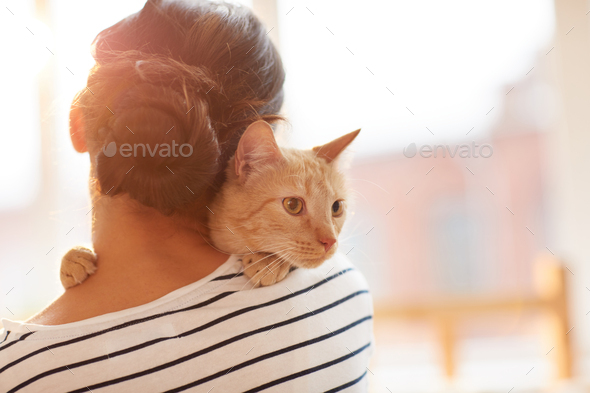 Woman Hugging Ginger Cat Back View - Stock Photo - Images