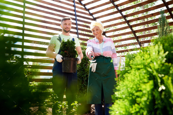 Two Gardeners in Botanical Greenhouse - Stock Photo - Images