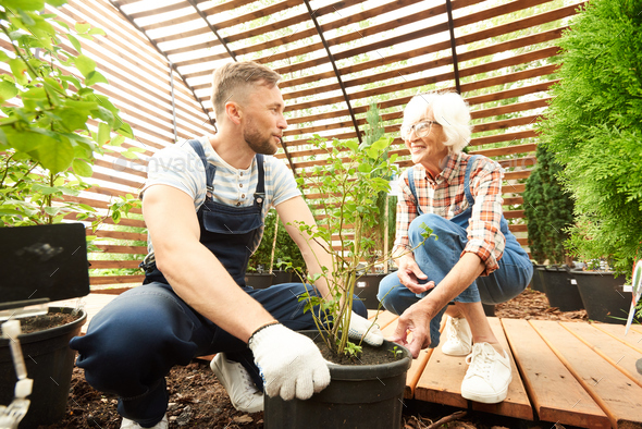 Mother and Son Working in Garden - Stock Photo - Images