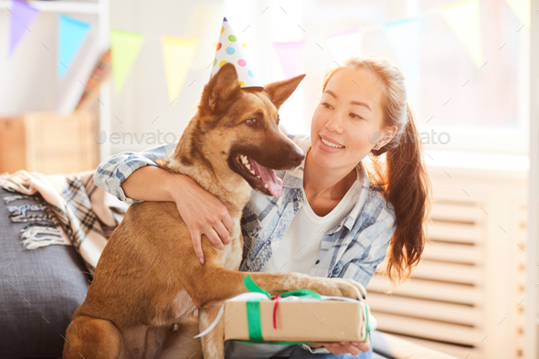 Birthday Present for Dog - Stock Photo - Images