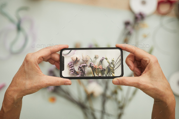 Taking Photo of Flowers Composition - Stock Photo - Images