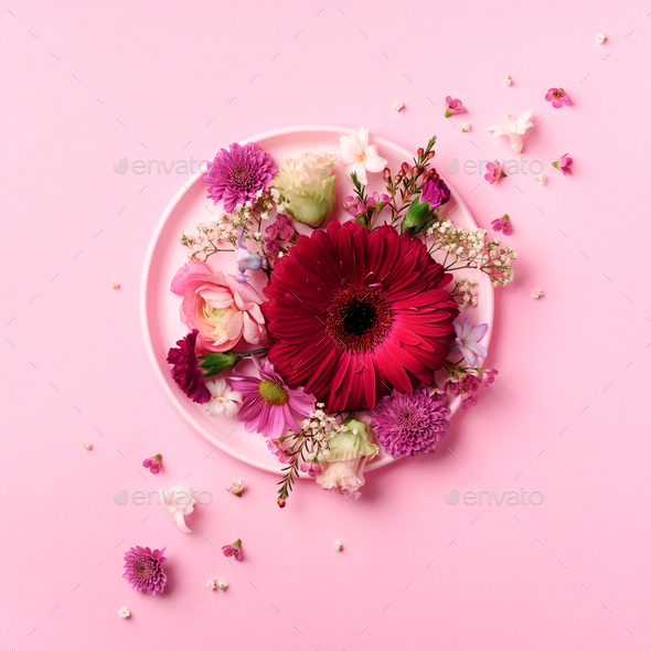 Gerbera and spring flowers on pink plate over punchy pastel background. Top view, flat lay. Square - Stock Photo - Images