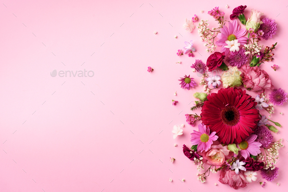 Spring composition of pink flowers on punchy pastel background with copy space. Creative layout - Stock Photo - Images