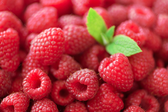 Fresh organic raspberries with mint leaves. Fruit background with copy space. Summer and berries - Stock Photo - Images