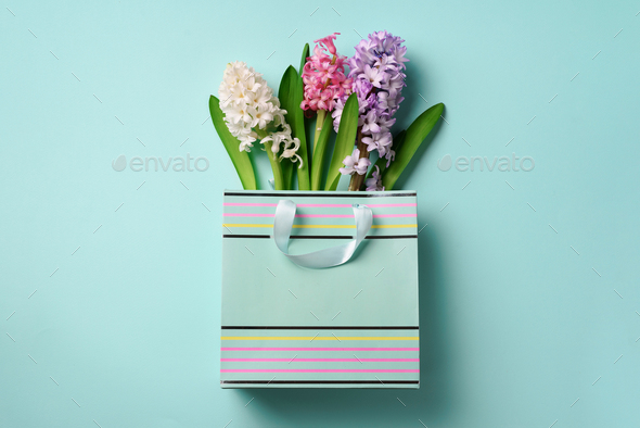 Spring hyacinth flowers in shopping paper bag on blue punchy pastel background. Banner with copy - Stock Photo - Images