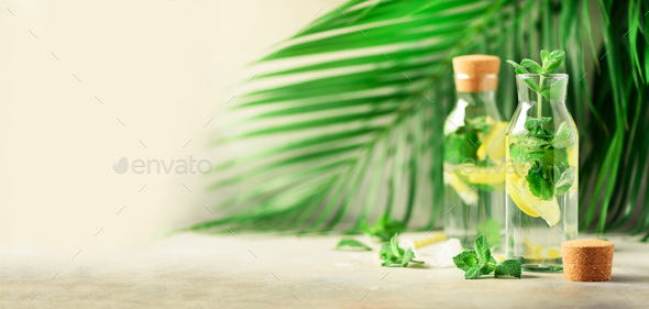Citrus lemonade - mint, lemon and tropical palm leaves on grey background. Detox drink. Banner with - Stock Photo - Images