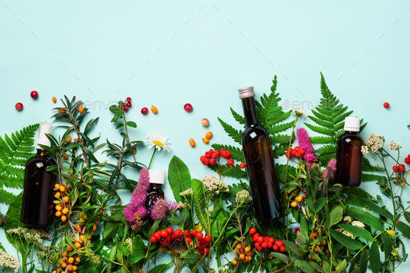 Essential oils in dark glass bottles and healing flowers, herbs on blue background. Holistic - Stock Photo - Images